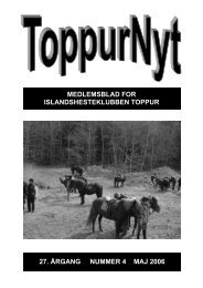 05/2006 - Toppur