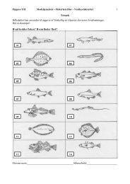 Billedarket kan anvendes til opgaver af forskellig art ... - Fiskeriets Hus