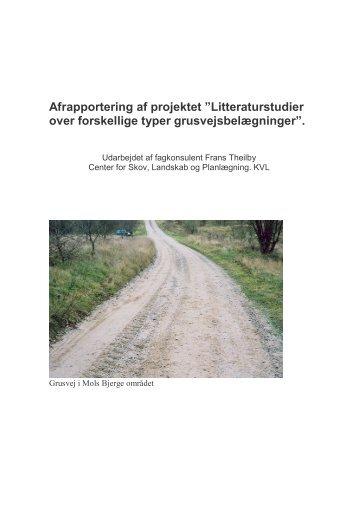 """Afrapportering af projektet """"Litteraturstudier over forskellige typer ..."""