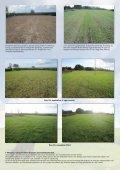 Moore Uni-drill Grassland Danish Leaflet - Page 3