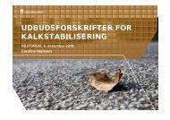 UDBUDSFORSKRIFTER FOR KALKSTABILISERING - Vejforum