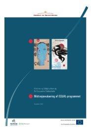 EQUAL-programmet - DMA/Research A/S