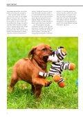 Børn og hunde - Dyrefondet - Page 4