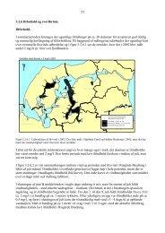 Iltforhold og svovlbrinte (pdf-902 KB)