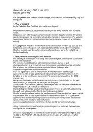 Referat 2011.pdf - Selskabet for Dansk Fotografi