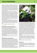 Kejsere og Terrakottakrigere - Jysk Rejsebureau - Page 7