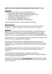 beretning for ledersektionenens bestyrelse 2008 – 2010