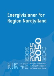 Energivisioner for Region Nordjylland - Niras