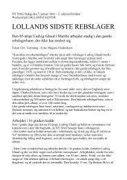 Lollands sidste rebslager
