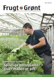 Spiselige potteplanter giver maden et pift - Gartneribladene