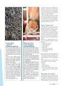– en livsstilssygdom hos heste? - E-vet - Page 2