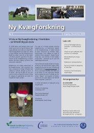 Ny Kvægforskning nr. 6, december 2008 - Kvægbrugets Forsøgscenter
