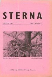 Sterna, bind 7 nr 2 (PDF-fil) - Museum Stavanger