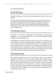Formandens beretning 2012 - Talkactive.net