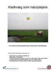 Samlet udgave af manualen til projekt Kødkvæg ... - LandbrugsInfo