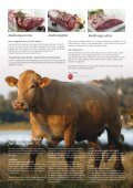 - med kraft og kvalitet - Slagter Hornsleth - Page 3