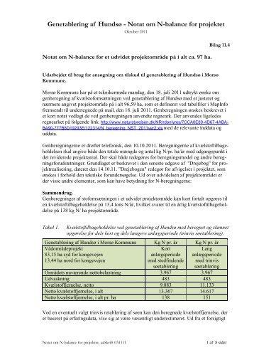 Genetablering af Hundsø - Notat om N-balance for projektet