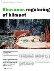 Amazonas - Verdens Skove