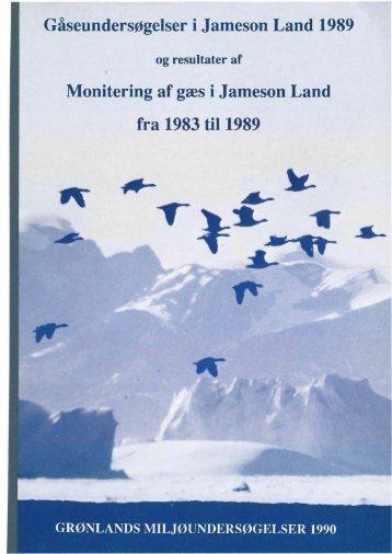 Gåseundersøgelser i Jameson Land 1989 Monitering af gæs i ...