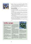 Her kan du gratis downloade Ledetråden nr. 2 - Bupl - Page 4
