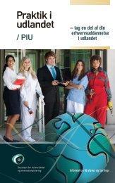 Praktik i udlandet / PIU - Tech College Aalborg