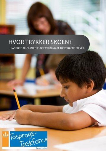 HVOR TRYKKER SKOEN? - Vertic