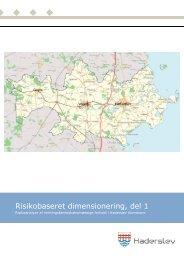 Bilag B Risikobaseret dimensionering, del 1 - Haderslev Kommune