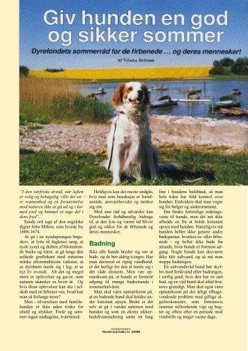 Giv hunden en god sommer - Dch Herning