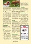 Giv hunden en god sommer - Dch Herning - Page 4