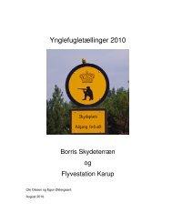 Ynglefugletællinger 2010. Borris skydeterræn og Flyvestation Karup.