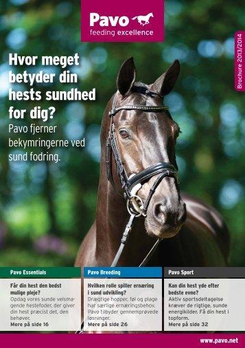 Hvor meget betyder din hests sundhed for dig? - Pavo DK