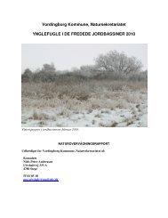 Ynglefugle i Stege Jordbassiner 2010 - Vordingborg Kommune