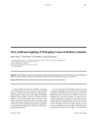 First BC Whooping Cranes.pdf, 200 KB - Save-The-Cedar League