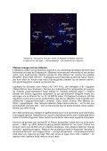 FORSVUNDNE STJERNER OG KONTINENTER - Visdomsnettet - Page 5