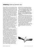 Storken og Danmarks Natur - Dansk Ornitologisk Forening - Page 2