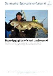 Bæredygtigt bulefiskeri på Øresund