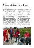Vind & Vejr nr. 2 - 2011 - Sydkystens Sejlklub - Page 7