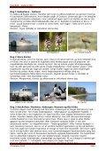 Gotland standard 2012.pdf - Scanbird - Page 3