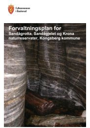 Forvaltningsplan for Sandågrotta, Sandågjelet ... - Fylkesmannen.no