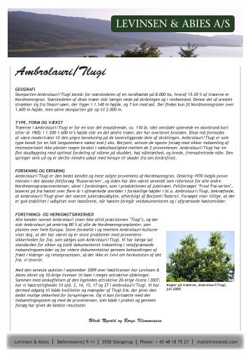 Ambrolauri/Tlugi - Levinsen & Abies