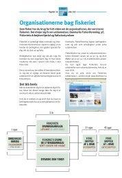 Kapitel 16 - Organisationerne bag fiskeriet (pdf ... - Fiskericirklen