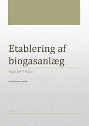 Etablering af biogasanlæg.pdf - Aarhus Maskinmesterskole Campus