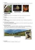 Udflugtsmål fra Lene & Peter (PDF) - Terrassencamping ... - Page 3