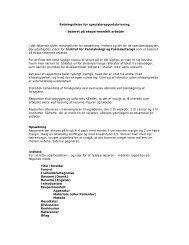 Retningslinier for specialerapportskrivning - baseret på ...