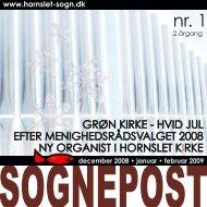 GRØN KIRKE - HVID JUL EFTER MENIGHEDSRÅDSVALGET 2008 ...