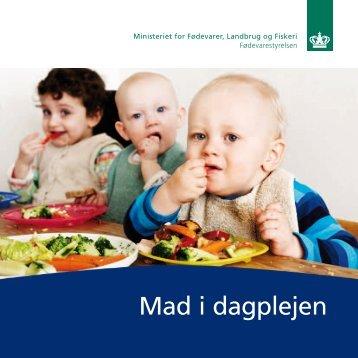 Her kan du downloade bogen 'Mad i dagplejen' - Alt om kost