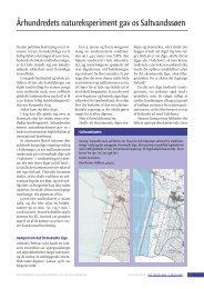 Århundredets natureksperiment gav os Saltvandssøen - Det tabte land