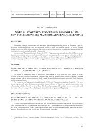 Note su Tegenaria Percuriosa Brignoli - Commissione Grotte ...