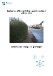 Beskæring af beplantning og renholdelse af veje og stier Information ...