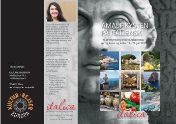 AMALFIKYSTEN PÅ ITALIENSK - ficus italica